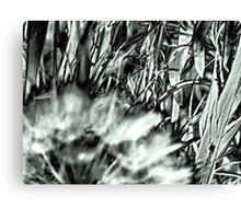 My Weeds & I Love 'Em Canvas Print