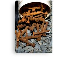 A Bucket of Spikes... Canvas Print