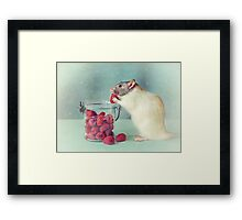 Snoozy always loves his food Framed Print
