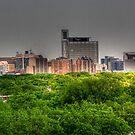 Winnipeg Skyline (Panoramic View) by Larry Trupp