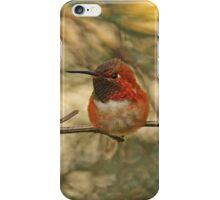 Rufous Hummingbird Photograph iPhone Case/Skin