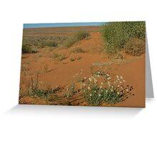Simpson Desert Flowers Greeting Card