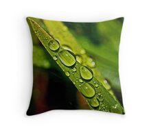 Wet 'N Wild Throw Pillow