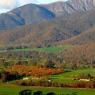 Autumn's pastures by su2anne