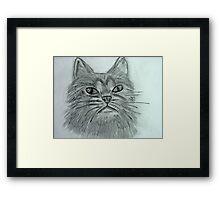 Justa Cat Framed Print