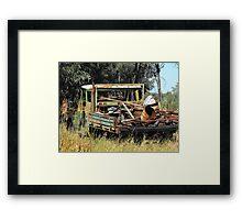 Work Horse a Pioneer in Briglow  Framed Print