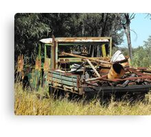 Work Horse a Pioneer in Briglow  Canvas Print