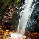 Waterfall Gully, South Australia by Bailey Designs