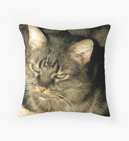 Tiger Toby I Throw Pillow