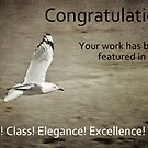 Entry for Style! Class! Elegance! Excellence! group by Edge-of-dreams