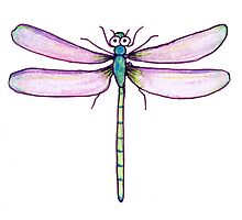 Drawing Day Dragonfly Photographic Print