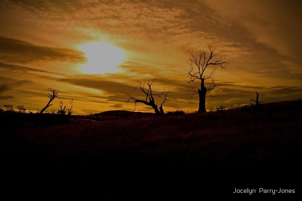 Dying sun by Jocelyn  Parry-Jones