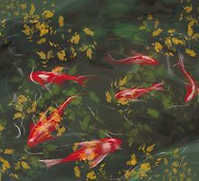 Autumn Koi by Tom Godfrey