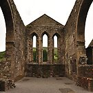 Balltinglass Abbey Wicklow. by Finbarr Reilly
