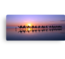 Iconic Camels on Cable Beach Canvas Print
