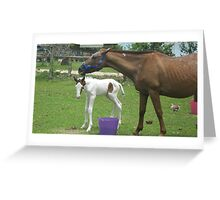 A Mother and Baby. Greeting Card