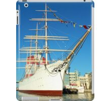Barken Viking iPad Case/Skin