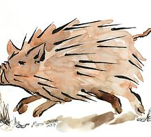 Warthog sketch by Maree  Clarkson