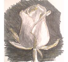 Sparkly rose Photographic Print