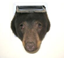 Bearflap by boozelightyear
