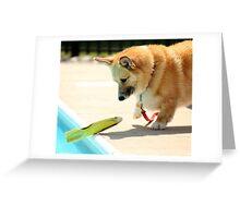 Amazed ! Greeting Card
