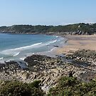 Caswell Bay by Crin