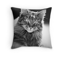 pprrrrrrfect Throw Pillow