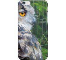 Owl in the Bear Park iPhone Case/Skin