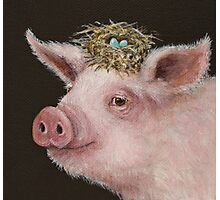 Pig with nest hat Photographic Print