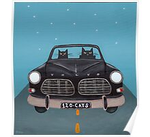 Black Volvo Amazon Poster