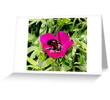 Yummy Tasting Flower By Jonathan Green Greeting Card