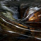 Water Glass by Julius C Montes