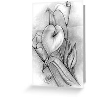 Calla Lillies -1 Greeting Card