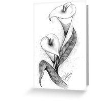 Calla Lillies -2 Greeting Card
