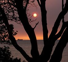 Smokey February sunset - Green Point  Brighton Victoria Australia by bayside2