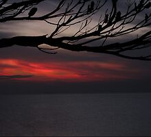 Smokey February sunset - Green Point -  Brighton - Victoria - Australia by bayside2
