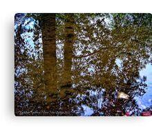 Ancient Mirror Canvas Print