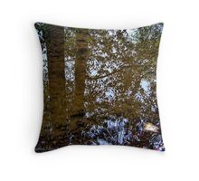 Ancient Mirror Throw Pillow