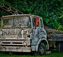 Chevy Flatbed in Kentucky by DBGuinn
