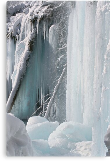Winter Wonderland by Wojciech Dabrowski
