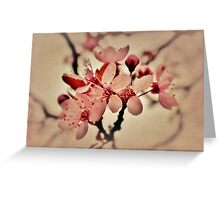 Burgeoning Blossom Greeting Card