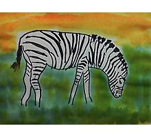 The Zebra, for the Africa Series  ( revised version), watercolor Photographic Print