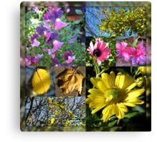 Autumn Leaves and Flowers Collage in Mirrored Frame Canvas Print