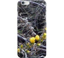 Yellow Wildflowers iPhone Case/Skin