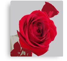 Distant Lover Canvas Print