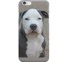 Snowie iPhone Case/Skin