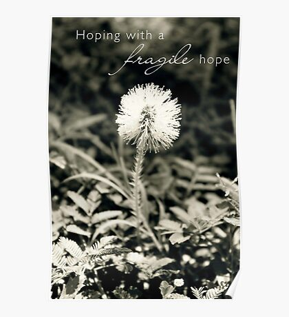 Hoping With a Fragile Hope Poster