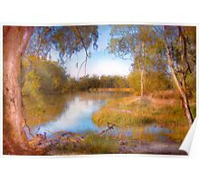 The River Murray, Along The Banks - Above Renmark, South Australia Poster