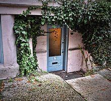 Doors- vines over lower door by Tom Davidson