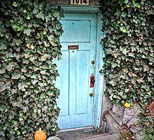 Doors- vine covered weathered door by Tom Davidson